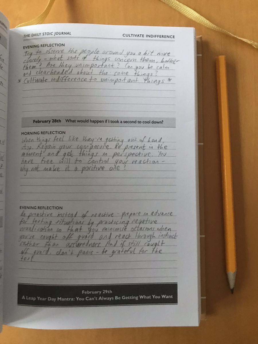 Examples of Journal-Writing Sorts